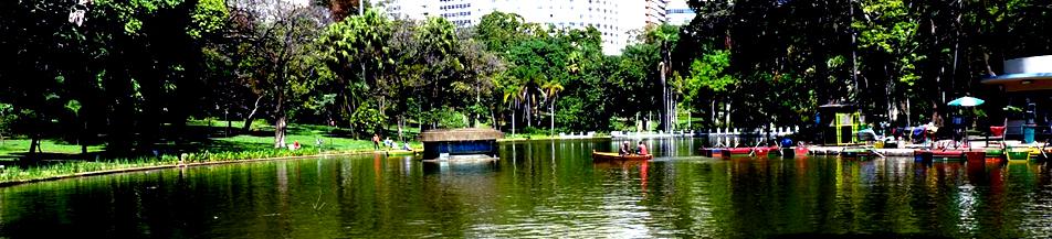 Parque na cidade de BH
