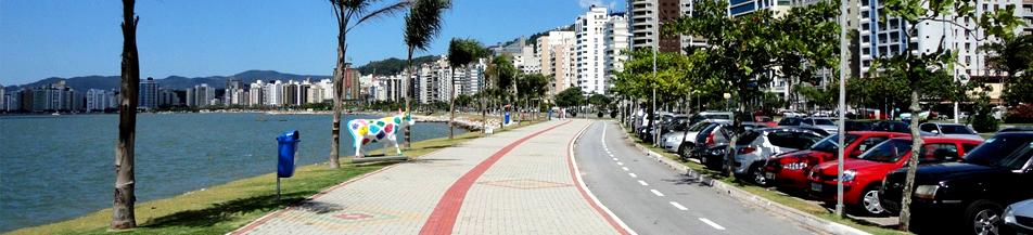 Avenida com uma bela vista